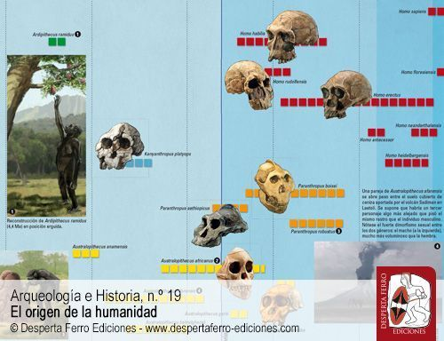 Australopitecos y otros homininos antiguos por Scott A. Williams (New York University)